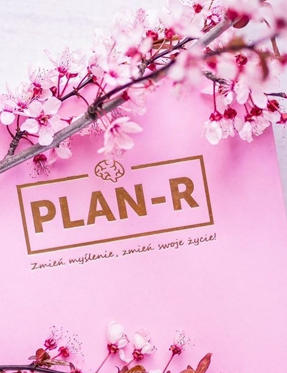 Planner motywacyjny PLAN-R - Gymhero